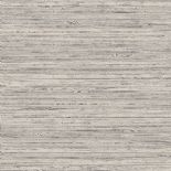 Passenger Wallpaper TP21270 Reeds Grey By DecoPrint For Galerie
